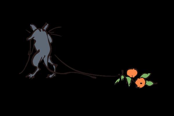 ネズミの画像 p1_13